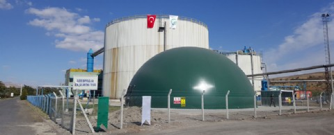 INTEGRATION OF BIOGAS INTO NATURAL GAS BOILER